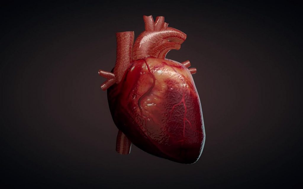 A new way to repair heart defects