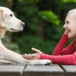 Why can't animals talk like humans?